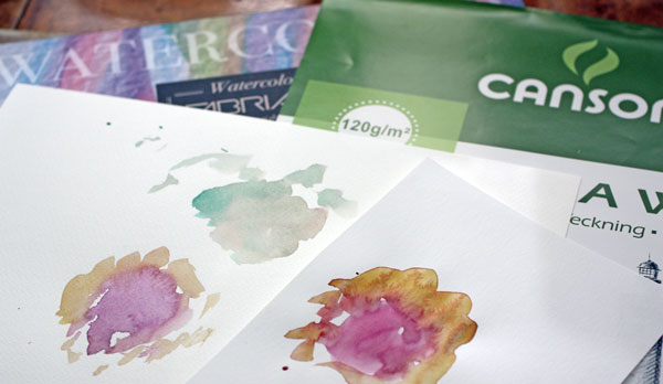 Fabriano watercolor paper and Canson drawing paper, Peony and Parakeet
