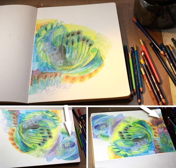 Four easy techniques to express yourself with colored pencils by Peony and Parakeet : Rotating the page.