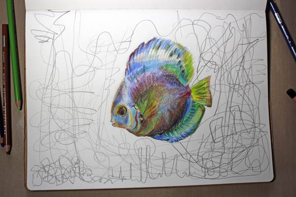 Discus Fish with colored pencils, by Peony and Parakeet. Combining realistic drawing with more free-form elements