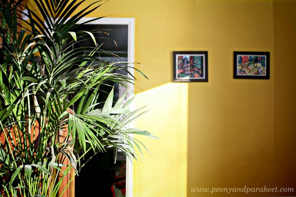 Yellow wall inspired by Tricia Guild's home decor book Design and Detail