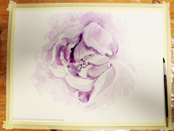Sketching with watercolor. Painting light and shadows before adding more colors. By Paivi Eerola from Peony and Parakeet. See her 6 tips for expressive floral art!