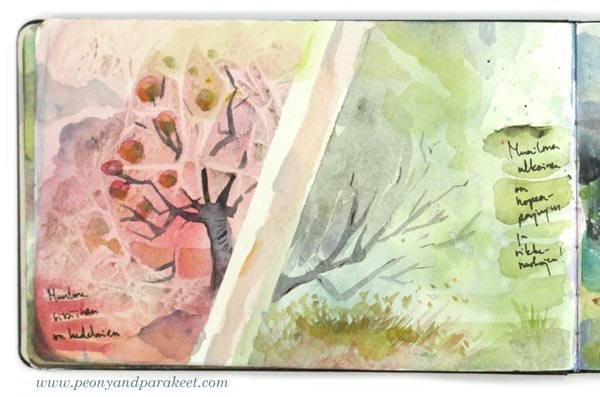 Watercolor art journal page by Paivi Eerola from Peony and Parakeet. See her watercolor diary for more ideas!