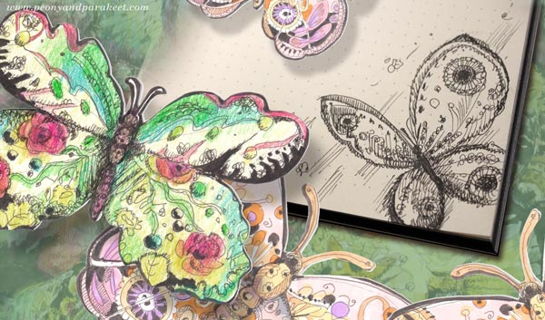 Butterflies. Small drawings by Paivi Eerola of Peony and Parakeet.