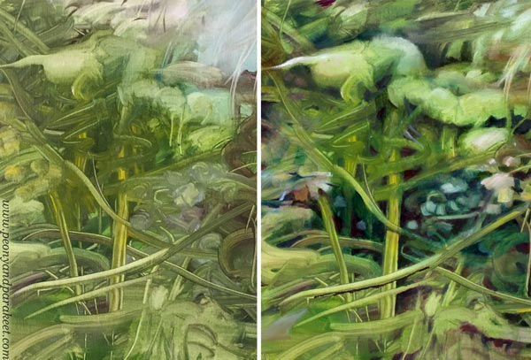 A detail in the first layers and after finishing. Read more tips about bringing more life into your art.