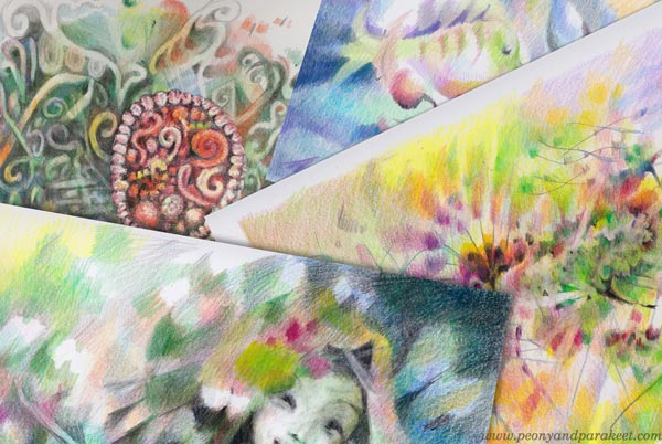 Colored pencil art in happy colors by Paivi Eerola of Peony and Parakeet.