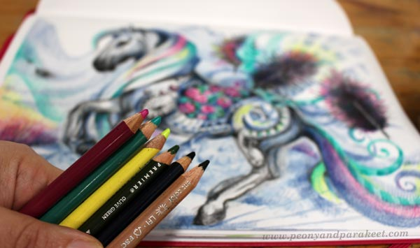 Using only a few pencils to create colored pencil art.
