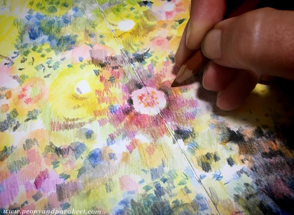 Step 5 of Color Like Monet, step by step instructions for colored pencils.